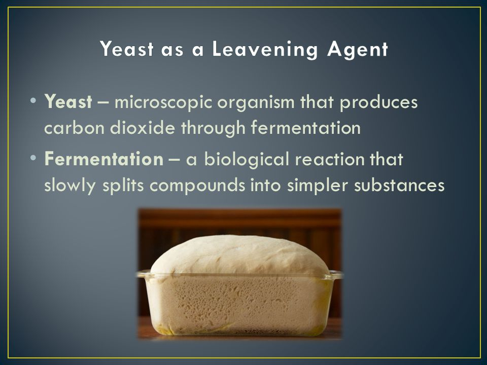 Yeast – microscopic organism that produces carbon dioxide through fermentation Fermentation – a biological reaction that slowly splits compounds into
