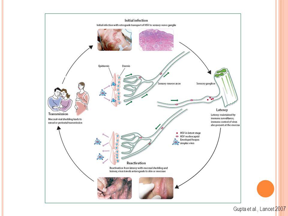 Gupta et al., Lancet 2007 Asymptomatic Infection