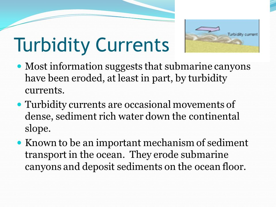 Turbidity Currents Most information suggests that submarine canyons have been eroded, at least in part, by turbidity currents.