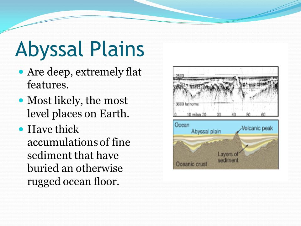 Abyssal Plains Are deep, extremely flat features. Most likely, the most level places on Earth.