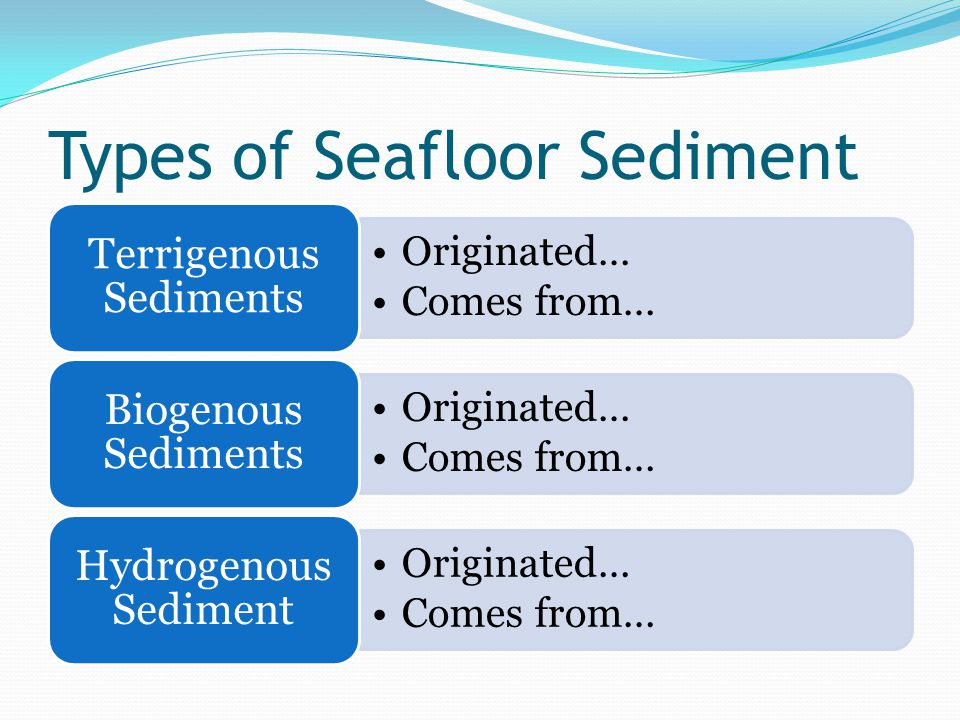 Types of Seafloor Sediment Originated… Comes from… Terrigenous Sediments Originated… Comes from… Biogenous Sediments Originated… Comes from… Hydrogenous Sediment