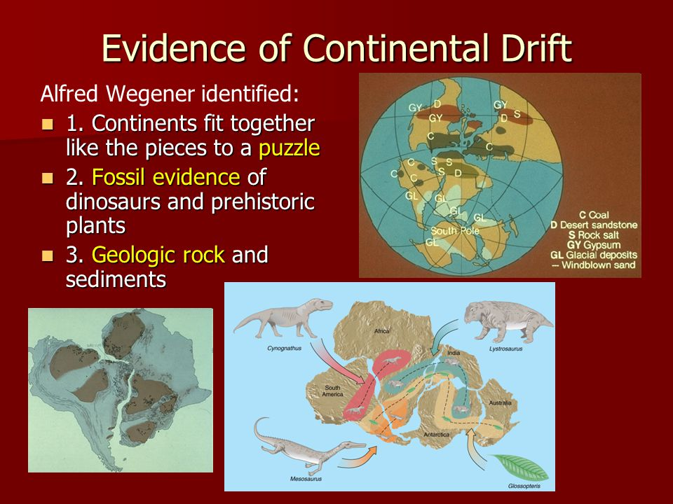 Evidence of Continental Drift Alfred Wegener identified: 1. Continents fit together like the pieces to a puzzle 1. Continents fit together like the pi