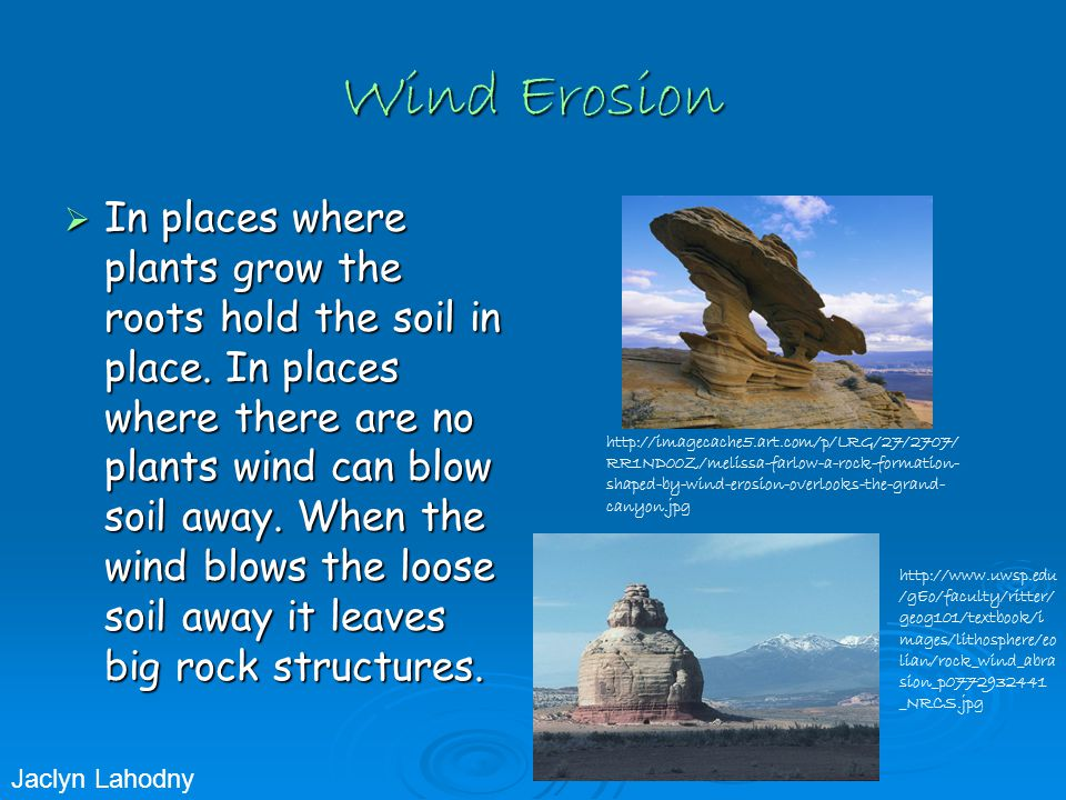 Wind Erosion  In places where plants grow the roots hold the soil in place.