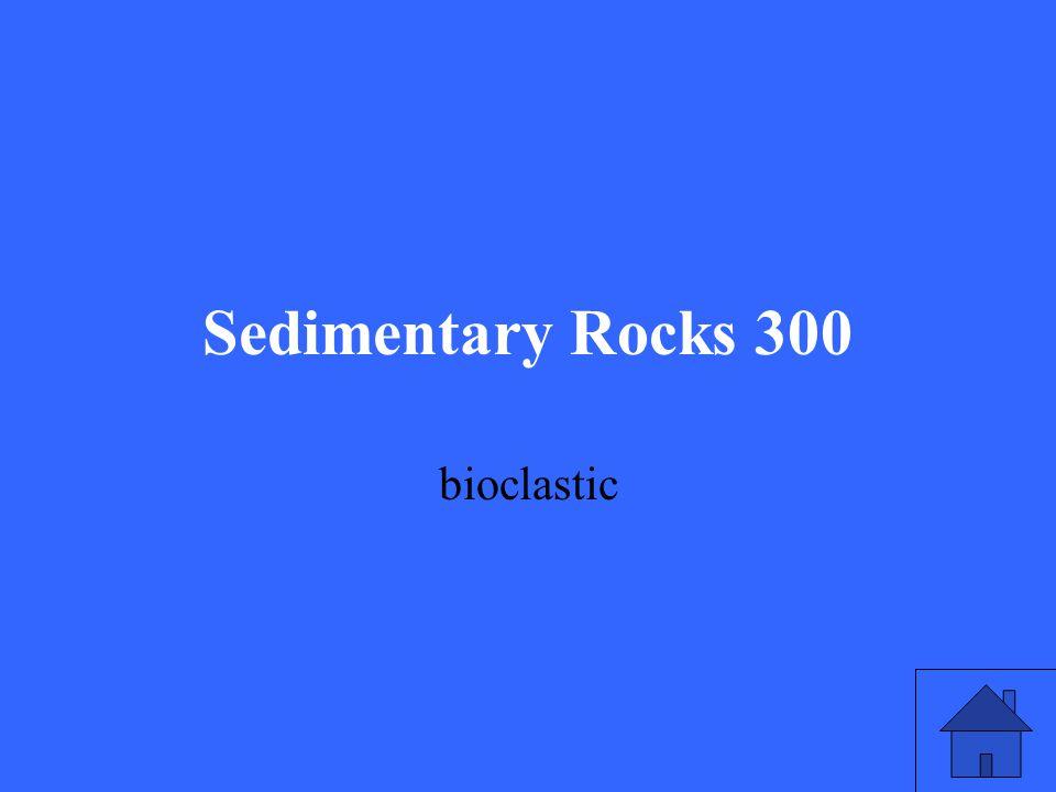 Sedimentary Rocks 300 bioclastic