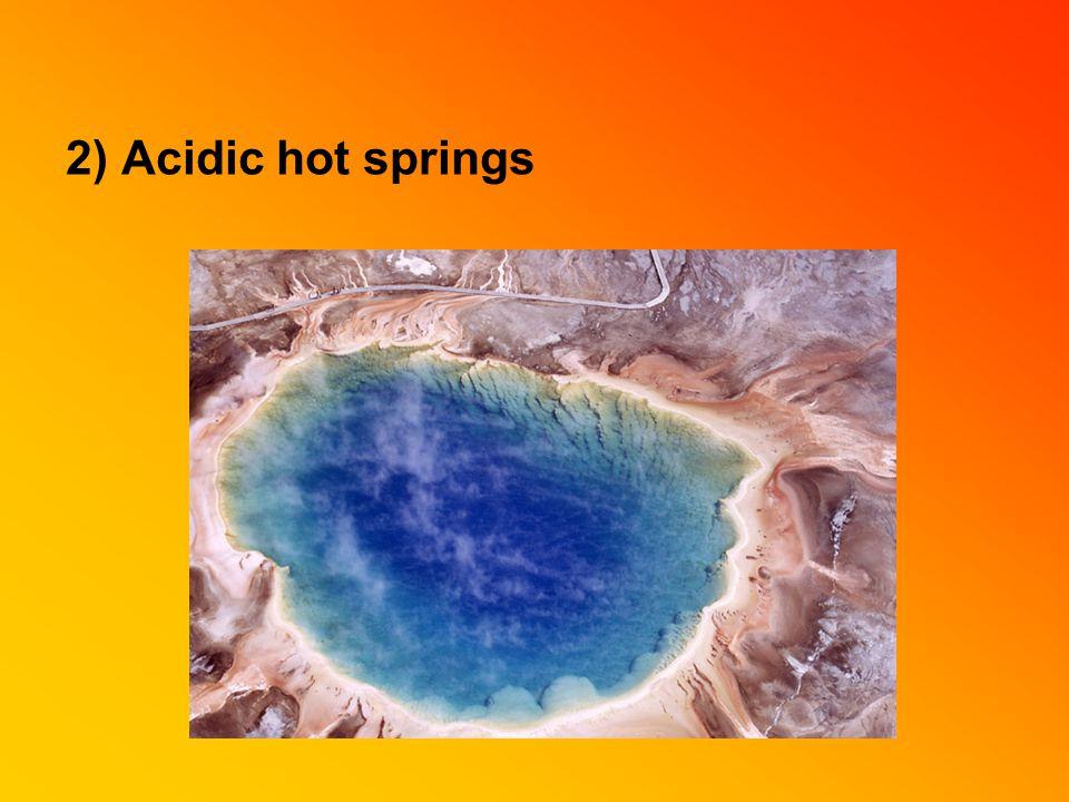 2) Acidic hot springs