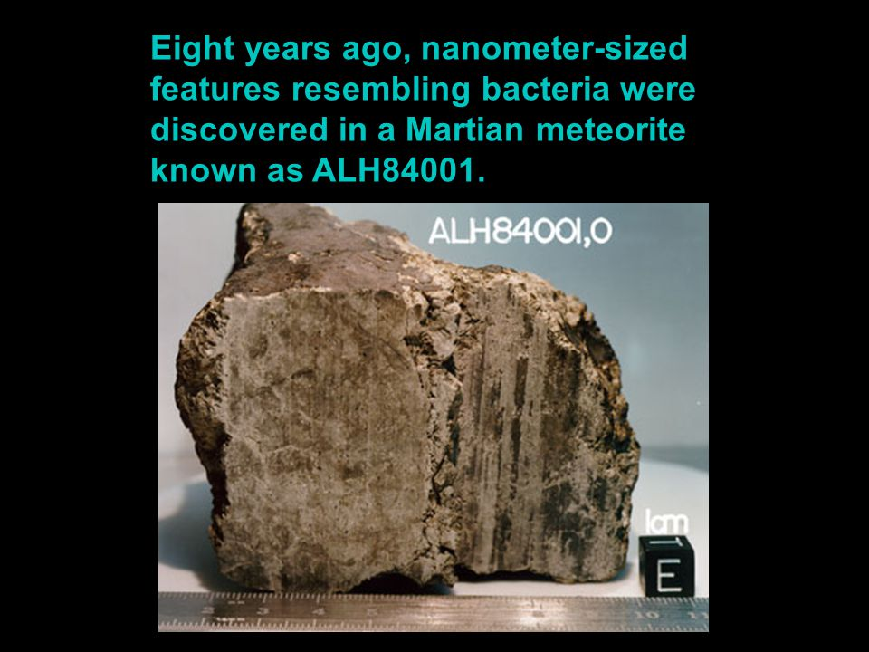 Eight years ago, nanometer-sized features resembling bacteria were discovered in a Martian meteorite known as ALH84001.