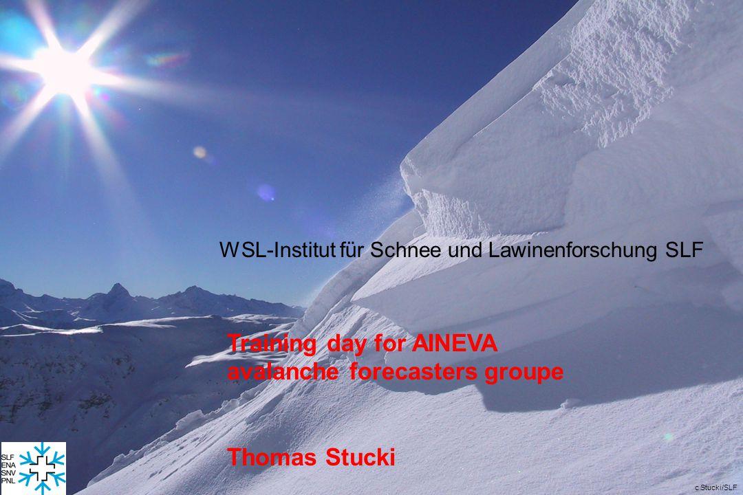 c Stucki/SLF WSL-Institut für Schnee und Lawinenforschung SLF Training day for AINEVA avalanche forecasters groupe Thomas Stucki