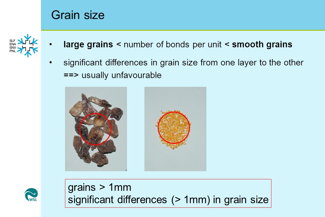 Grain size large grains < number of bonds per unit < smooth grains significant differences in grain size from one layer to the other ==> usually unfavourable grains > 1mm significant differences (> 1mm) in grain size