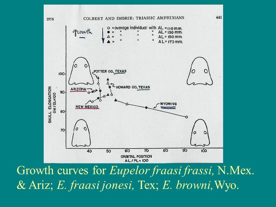 Growth curves for Eupelor fraasi frassi, N.Mex. & Ariz; E. fraasi jonesi, Tex; E. browni,Wyo.