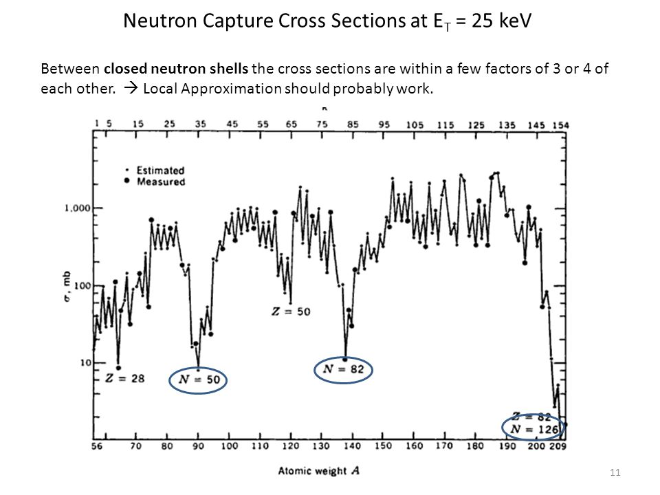 11 Neutron Capture Cross Sections at E T = 25 keV Between closed neutron shells the cross sections are within a few factors of 3 or 4 of each other.