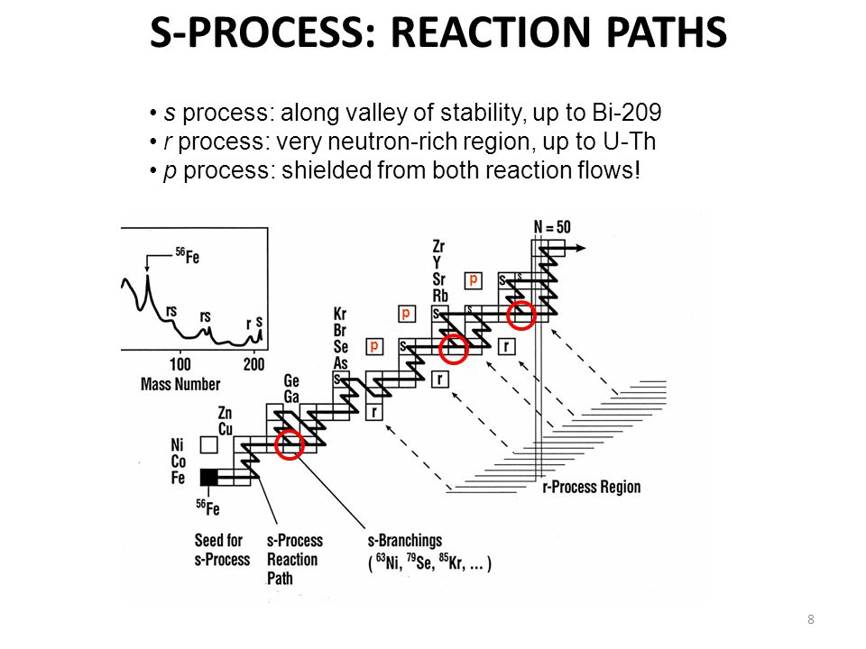 8 p p p s process: along valley of stability, up to Bi-209 r process: very neutron-rich region, up to U-Th p process: shielded from both reaction flows.
