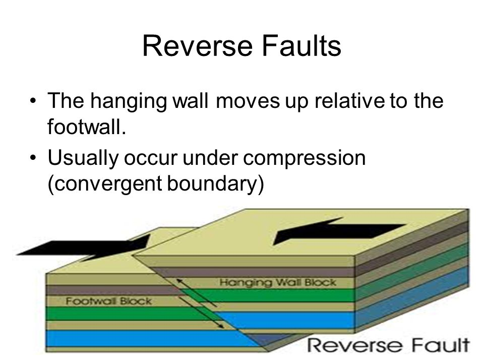 Reverse Faults The hanging wall moves up relative to the footwall. Usually occur under compression (convergent boundary)
