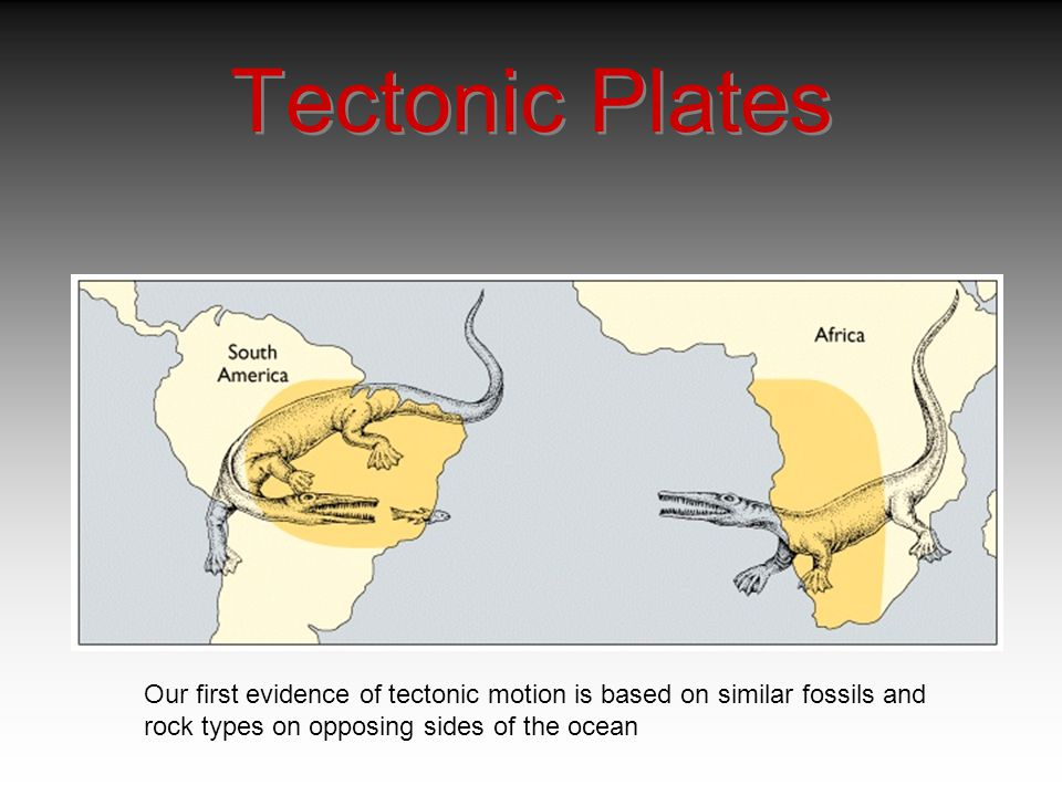 Tectonic Plates Our first evidence of tectonic motion is based on similar fossils and rock types on opposing sides of the ocean