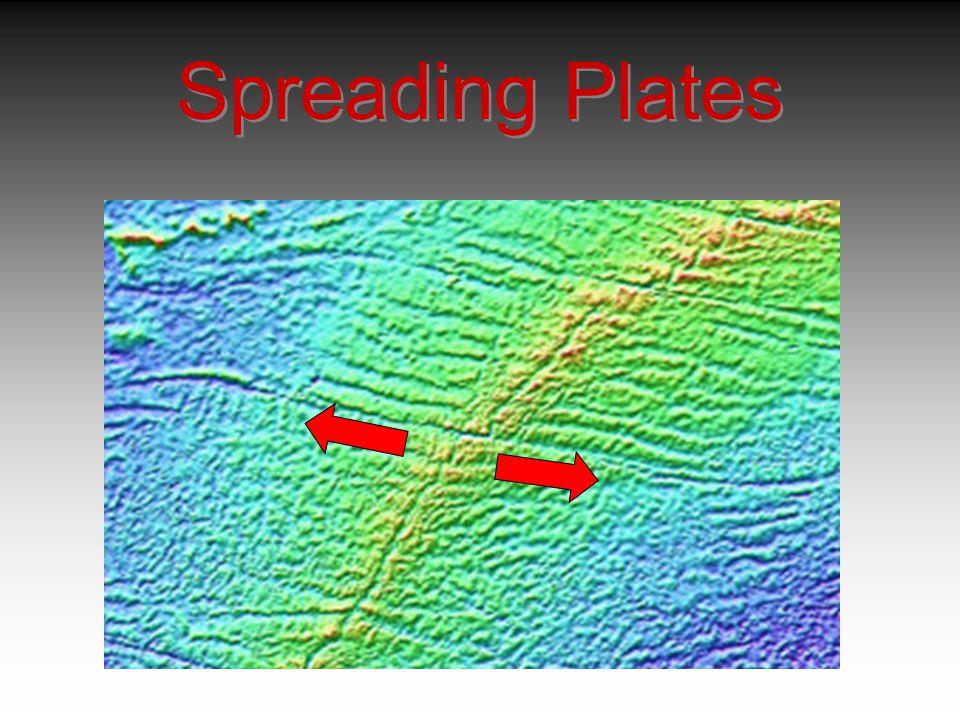 Spreading Plates