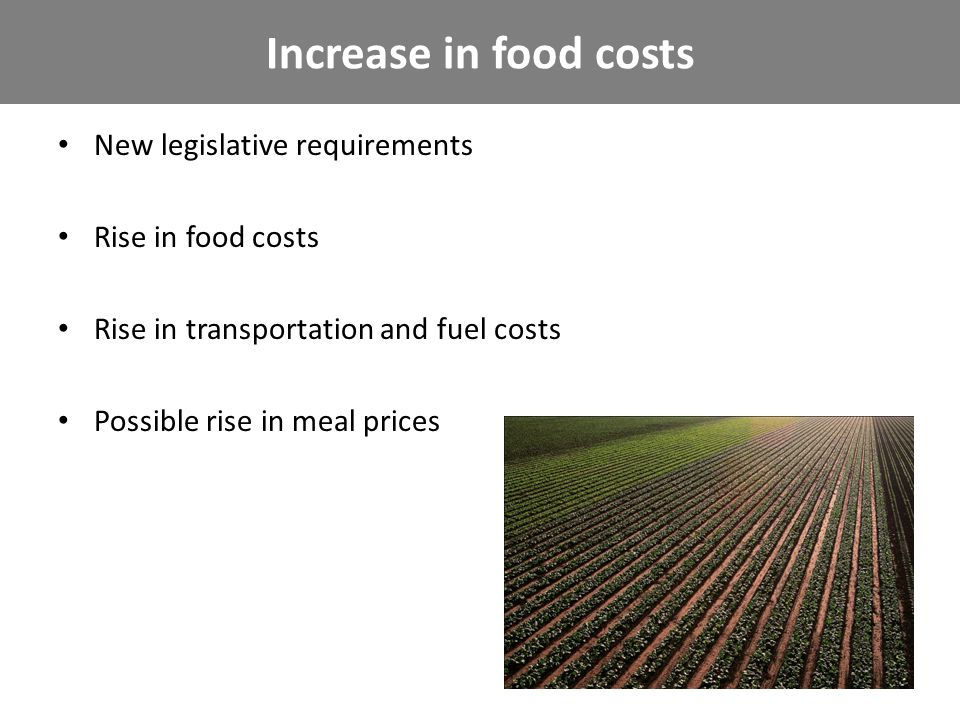 New legislative requirements Rise in food costs Rise in transportation and fuel costs Possible rise in meal prices Increase in food costs
