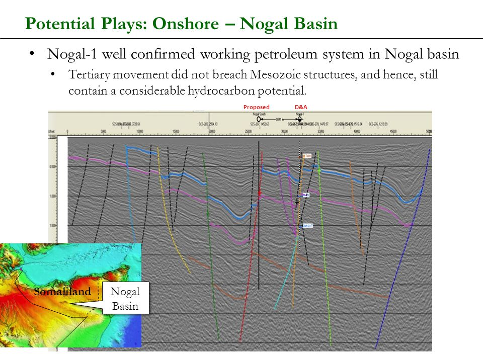 Potential Plays: Onshore – Nogal Basin Nogal-1 well confirmed working petroleum system in Nogal basin Tertiary movement did not breach Mesozoic struct