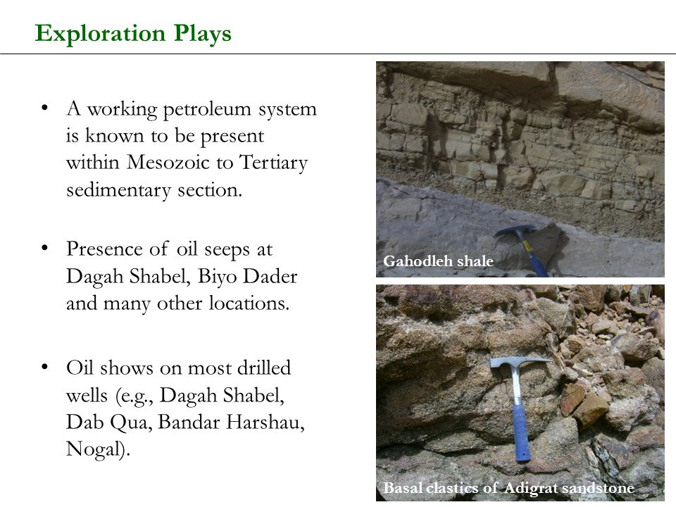 Exploration Plays A working petroleum system is known to be present within Mesozoic to Tertiary sedimentary section. Presence of oil seeps at Dagah Sh