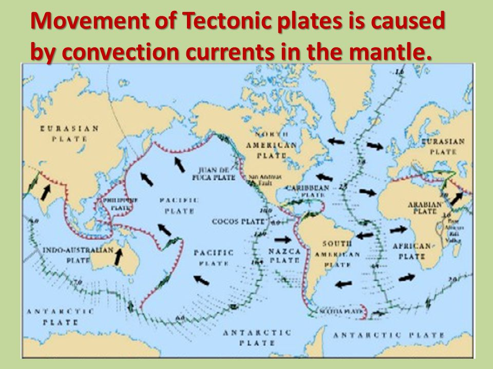Movement of Tectonic plates is caused by convection currents in the mantle.