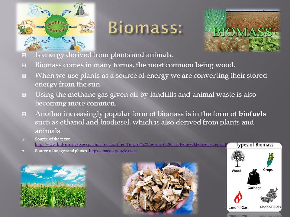  Is energy derived from plants and animals.  Biomass comes in many forms, the most common being wood.  When we use plants as a source of energy we
