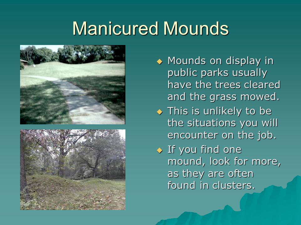 Manicured Mounds  Mounds on display in public parks usually have the trees cleared and the grass mowed.