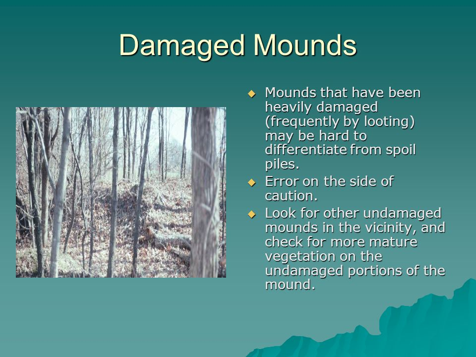 Damaged Mounds  Mounds that have been heavily damaged (frequently by looting) may be hard to differentiate from spoil piles.