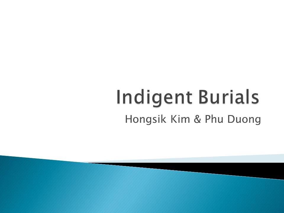 Hongsik Kim & Phu Duong