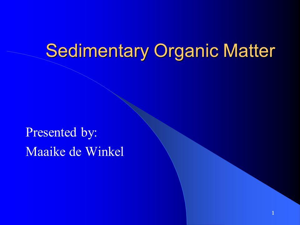 1 Sedimentary Organic Matter Presented by: Maaike de Winkel