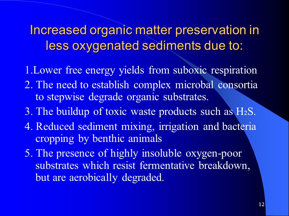 12 Increased organic matter preservation in less oxygenated sediments due to: 1.Lower free energy yields from suboxic respiration 2.