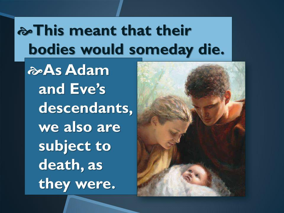  Adam  Adam and Eve ate the forbidden fruit in the Garden of Eden.