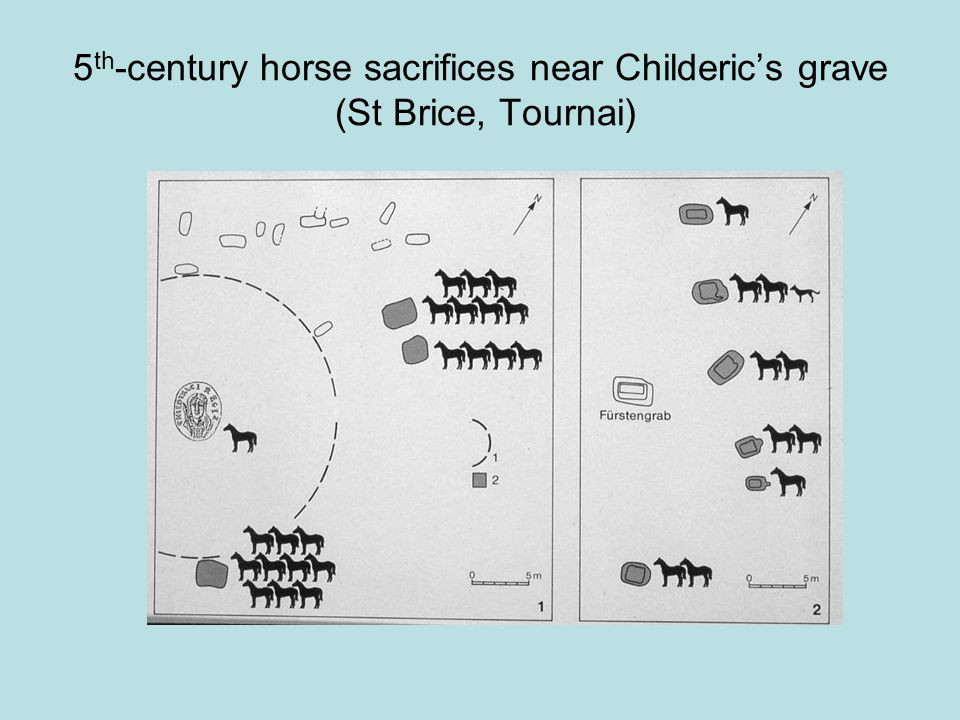 5 th -century horse sacrifices near Childeric's grave (St Brice, Tournai)