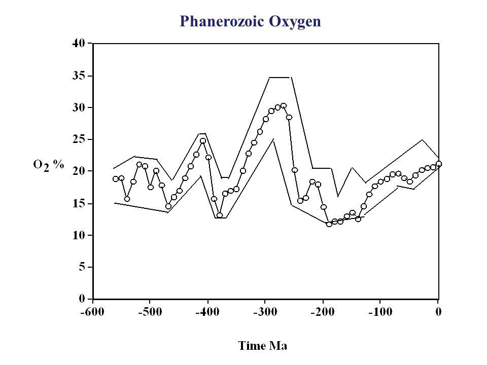 Phanerozoic Oxygen