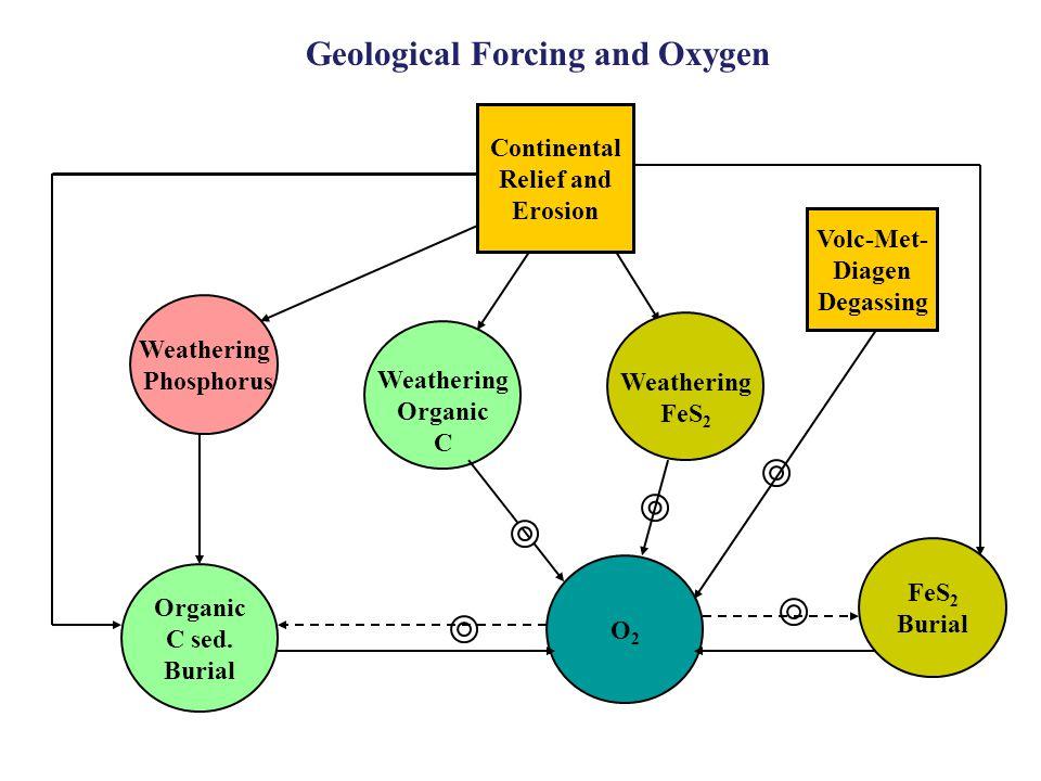 Weathering Organic C Organic C sed.