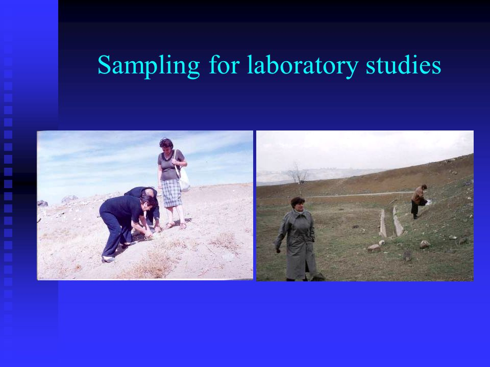 Sampling for laboratory studies