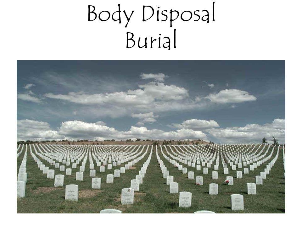 Body Disposal Burial