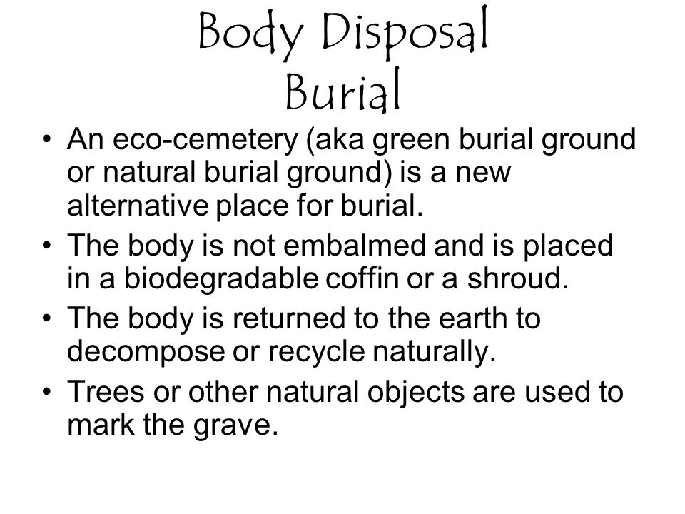 An eco-cemetery (aka green burial ground or natural burial ground) is a new alternative place for burial.
