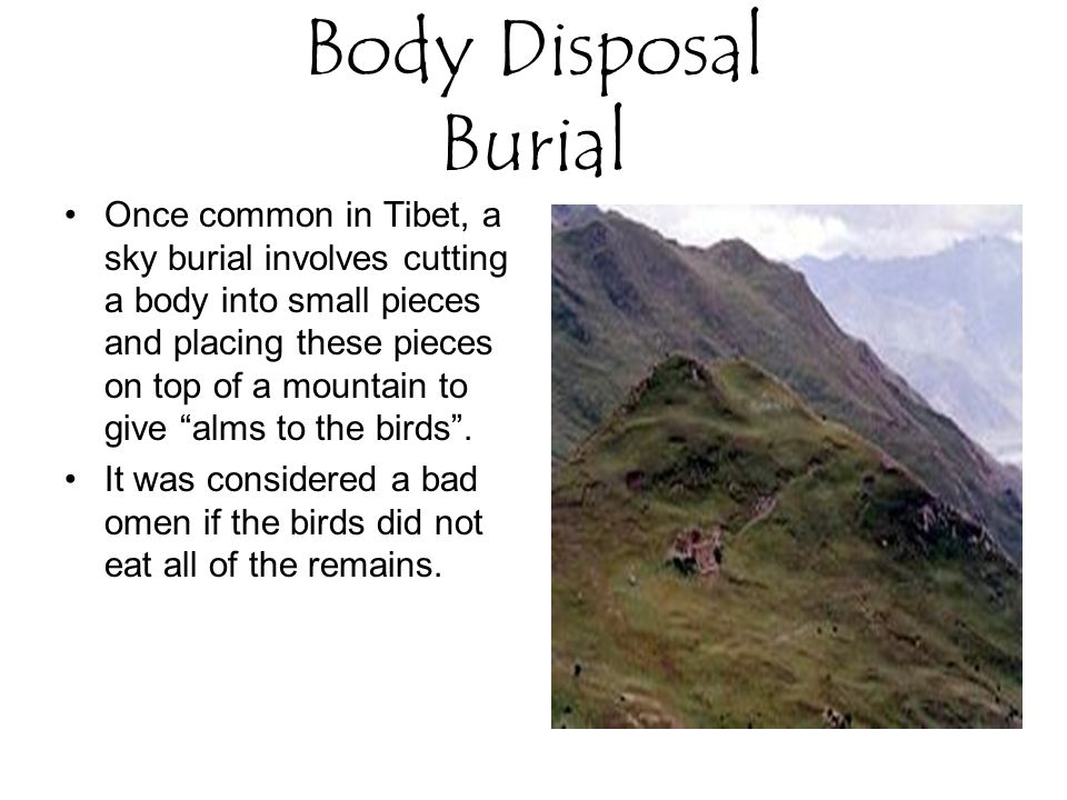 Body Disposal Burial Once common in Tibet, a sky burial involves cutting a body into small pieces and placing these pieces on top of a mountain to give alms to the birds .