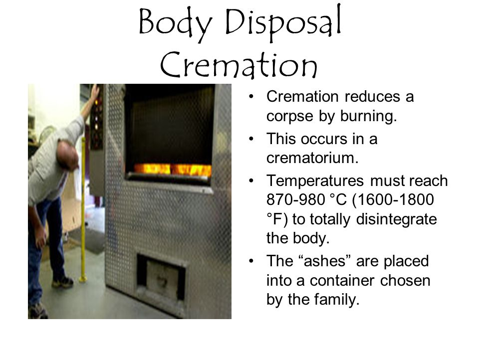 Body Disposal Cremation Cremation reduces a corpse by burning.