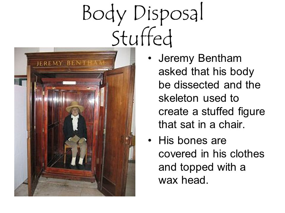 Body Disposal Stuffed Jeremy Bentham asked that his body be dissected and the skeleton used to create a stuffed figure that sat in a chair.
