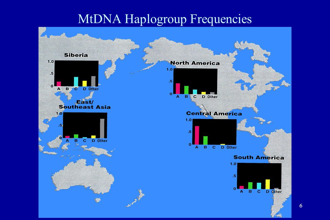 6 MtDNA Haplogroup Frequencies