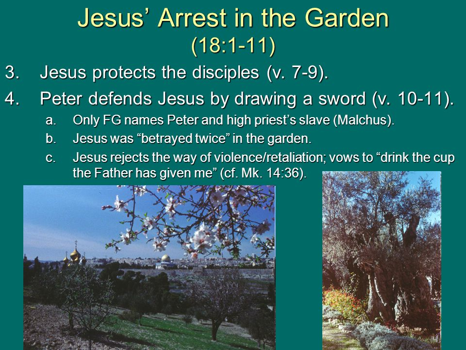 Jesus' Arrest in the Garden (18:1-11) 3.Jesus protects the disciples (v.