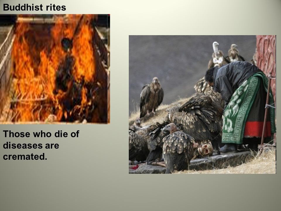 Buddhist rites Those who die of diseases are cremated.