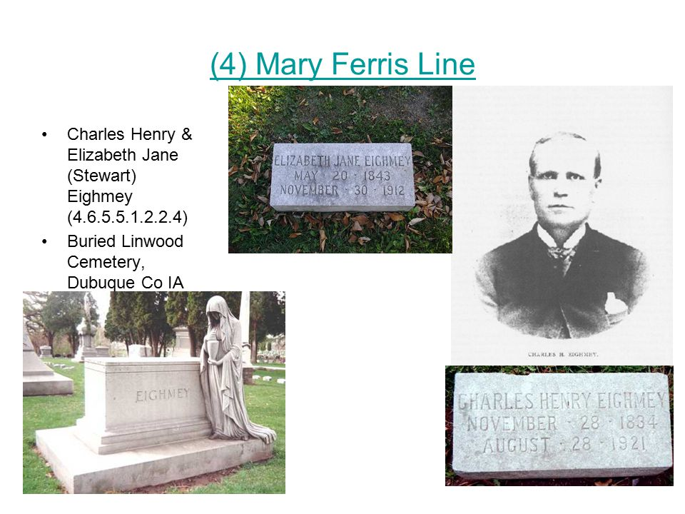 (4) Mary Ferris Line Charles Henry & Elizabeth Jane (Stewart) Eighmey (4.6.5.5.1.2.2.4) Buried Linwood Cemetery, Dubuque Co IA