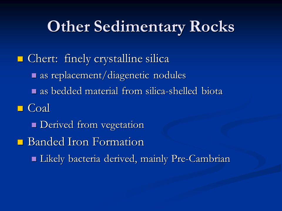 Other Sedimentary Rocks Chert: finely crystalline silica Chert: finely crystalline silica as replacement/diagenetic nodules as replacement/diagenetic