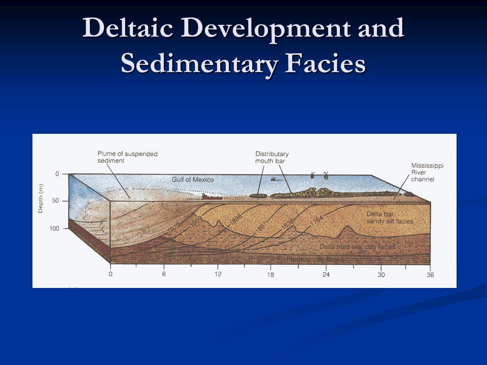 Deltaic Development and Sedimentary Facies