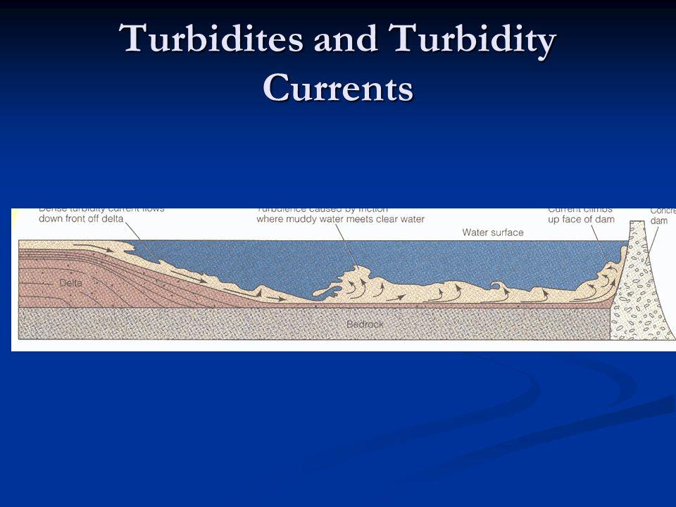 Turbidites and Turbidity Currents