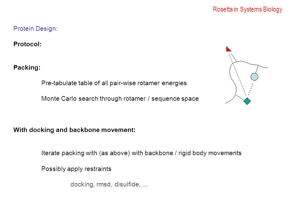 Rosetta in Systems Biology Protein Design: Protocol: Packing: Pre-tabulate table of all pair-wise rotamer energies Monte Carlo search through rotamer / sequence space With docking and backbone movement: Iterate packing with (as above) with backbone / rigid body movements Possibly apply restraints docking, rmsd, disulfide, …