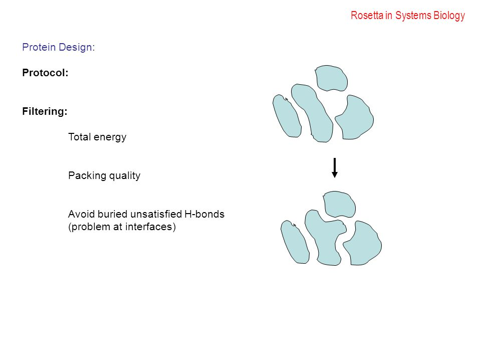 Rosetta in Systems Biology Protein Design: Protocol: Filtering: Total energy Packing quality Avoid buried unsatisfied H-bonds (problem at interfaces)