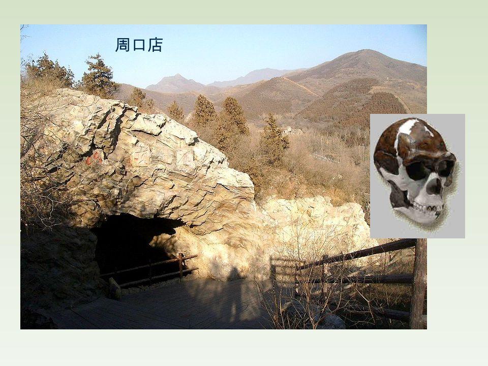 Archeological discoveries 周口店 Zhoukoudian (500,000 BCE) 仰韶 Yangshao (6000-3000 BCE) 龍山 Longshan (3000-2000 BCE)