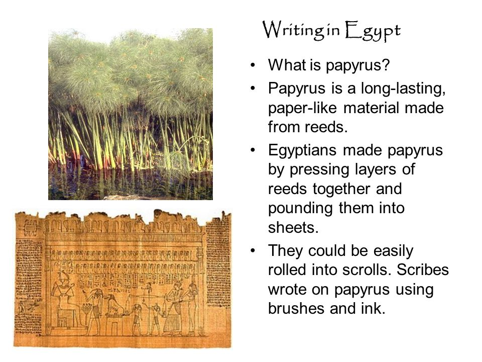 Writing in Egypt What is papyrus? Papyrus is a long-lasting, paper-like material made from reeds. Egyptians made papyrus by pressing layers of reeds t