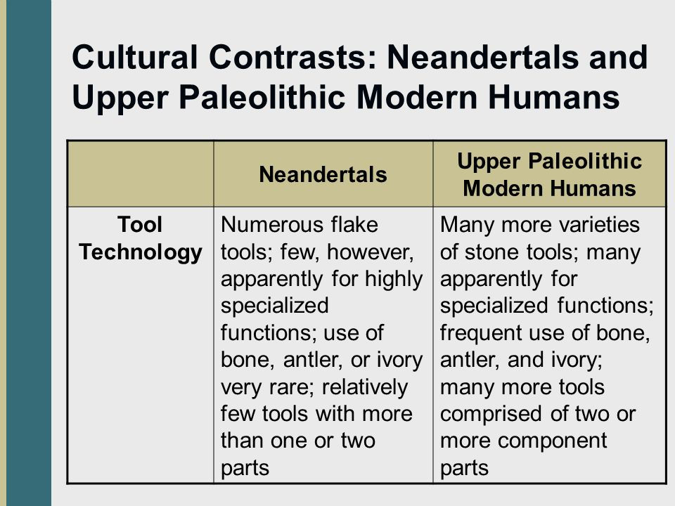 Cultural Contrasts: Neandertals and Upper Paleolithic Modern Humans Neandertals Upper Paleolithic Modern Humans Tool Technology Numerous flake tools; few, however, apparently for highly specialized functions; use of bone, antler, or ivory very rare; relatively few tools with more than one or two parts Many more varieties of stone tools; many apparently for specialized functions; frequent use of bone, antler, and ivory; many more tools comprised of two or more component parts